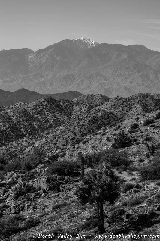 San Jacinto (from Joshua Tree NP)