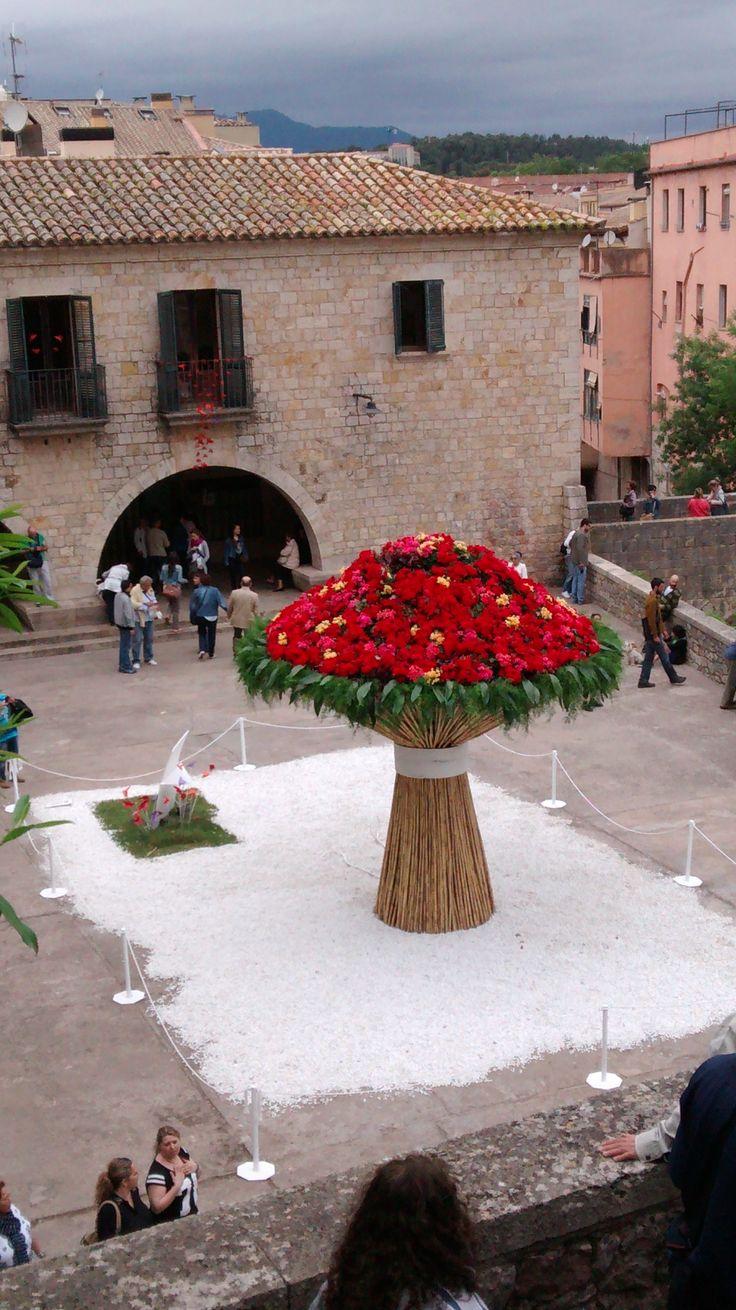 Girona Temps de Flors (Flower Festival in Girona, may2014) - Catalunya