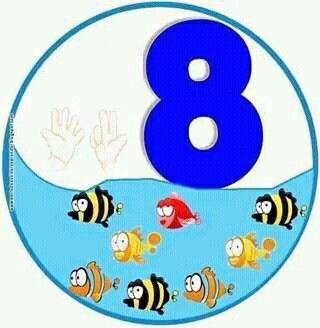 8 peces