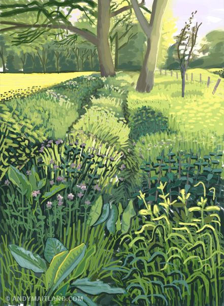 Wild Flowers, Summer, Surrey, England, 2012 iPad painting. - Andy Maitland