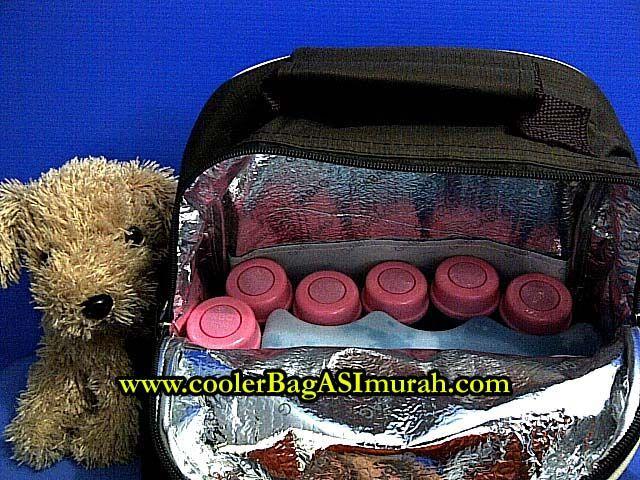 Cooler Bag ASI Murah http://coolerbagasimurah.com/