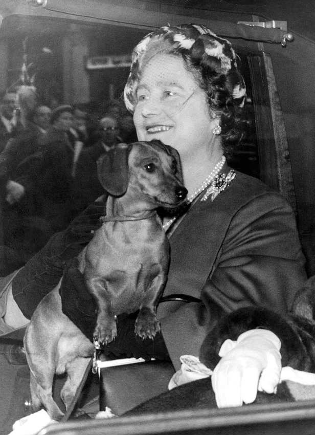 Queen Elizabeth, the Queen Mother, with her dachshund, London, December 1958.