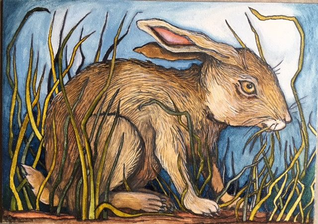 Cottontail by Tracie Noles-Ross