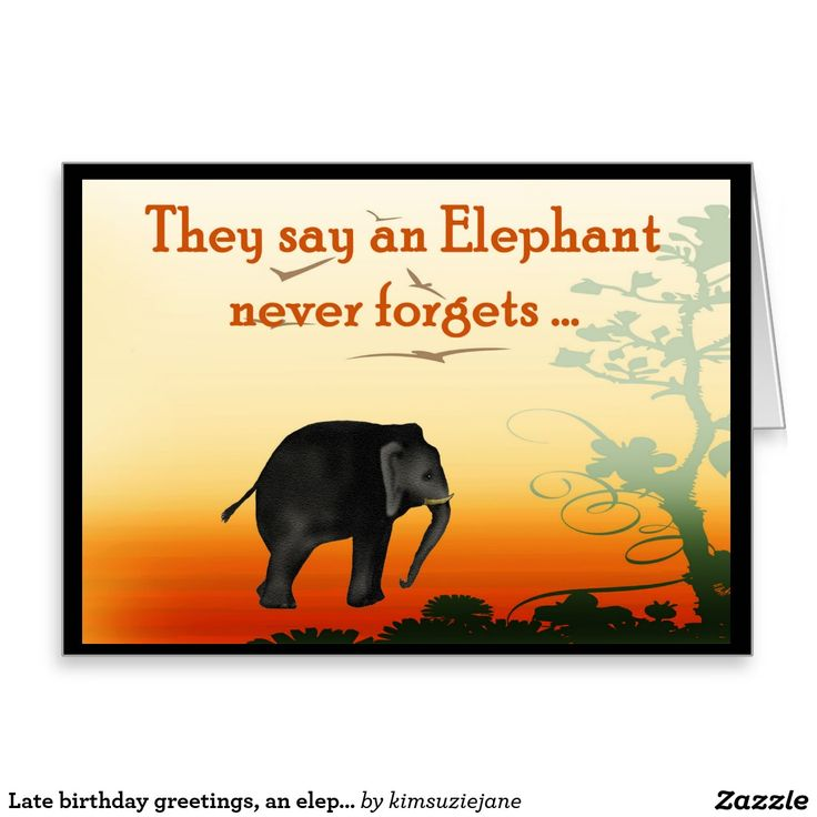 late birthday greetings an elephant never forgets card birthday greetings stationery and note. Black Bedroom Furniture Sets. Home Design Ideas