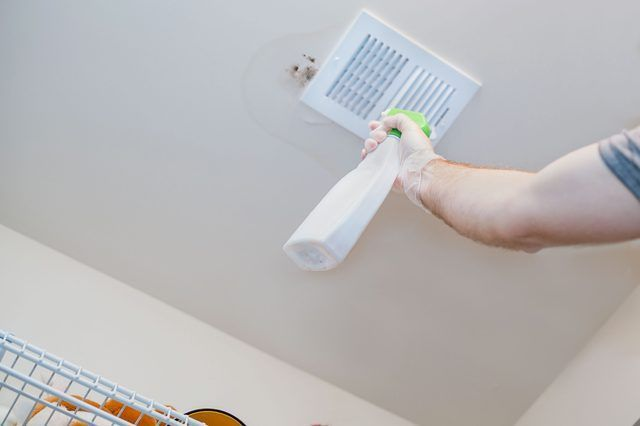 How To Clean Mold Off Of The Ceiling Hunker Cleaning Mold Mold In Bathroom Cleaning Hacks