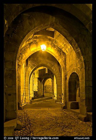 Main entrance of medieval city through drawbridge at night. Carcassonne ~ France