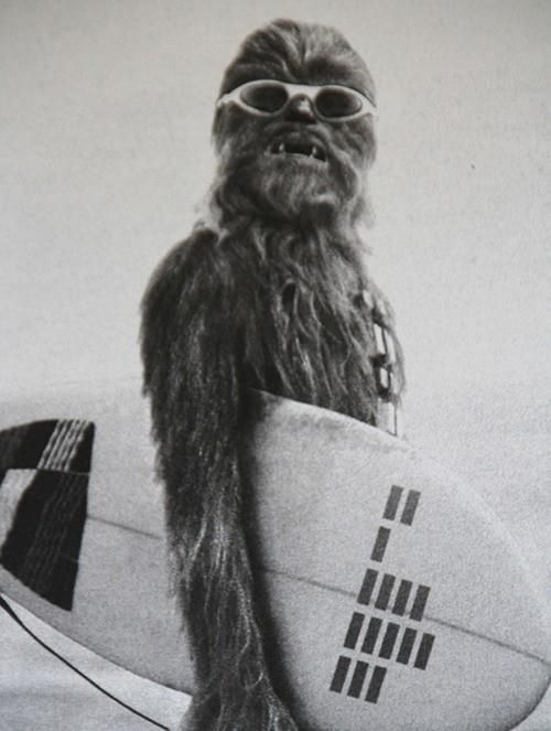 Chewy is a surfer