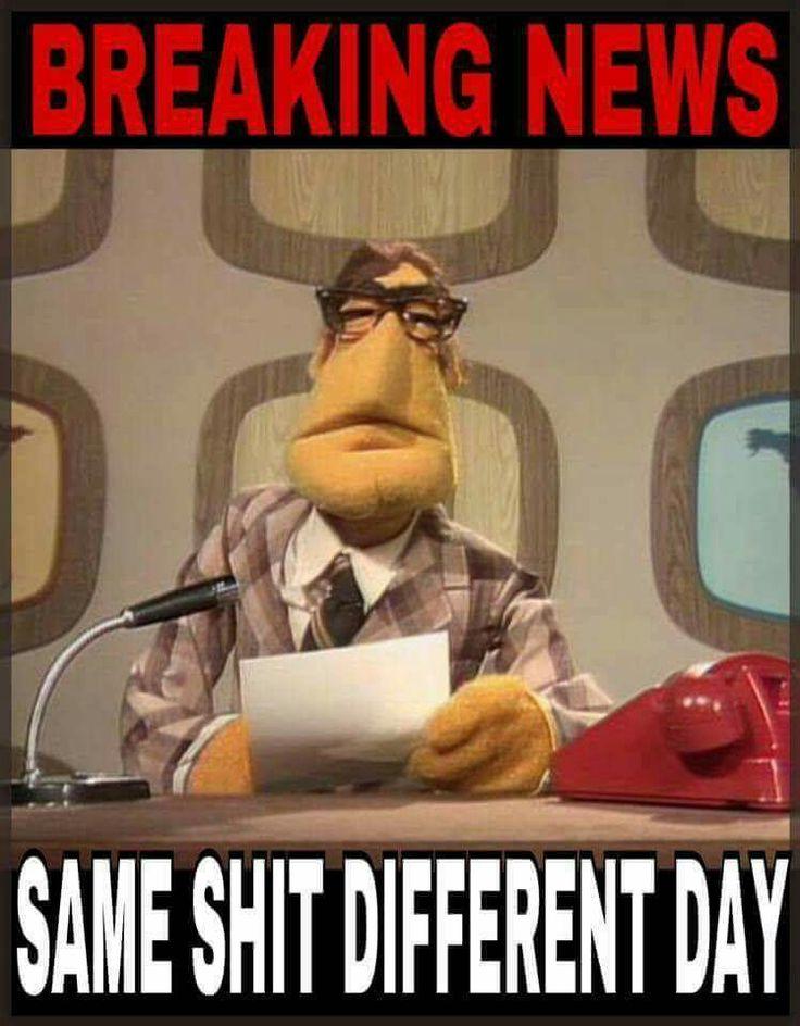 Muppet meme - http://WeBuySemiTrailers.com