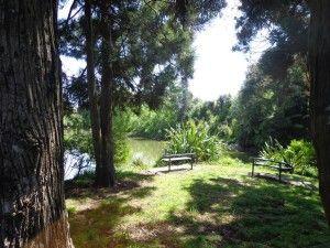 Henderson Creek Loop