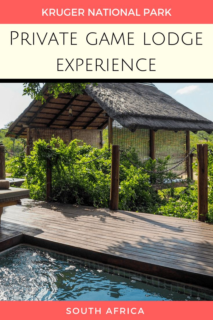 Staying in a private game lodge in Kruger National Park | #SouthAfrica #safari #Kruger via @dangerousbiz