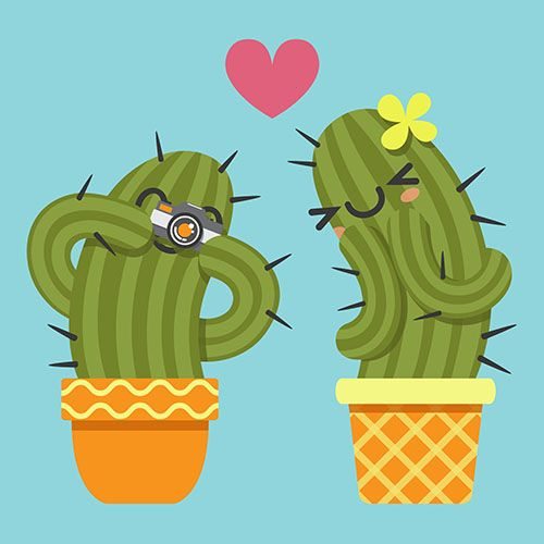 loving couple of cactus taking a pictures with camera