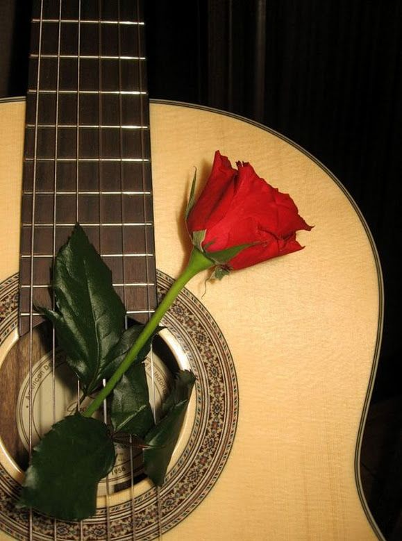 Гиф гитара и роза