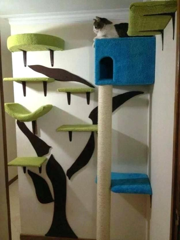 Image result for cat wall shelves diy
