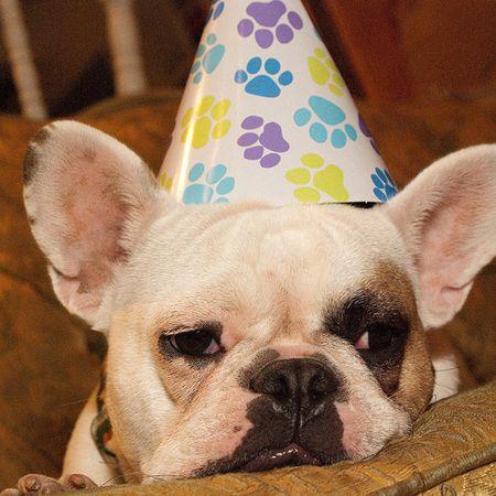 boldog születésnapot torta - Google Search