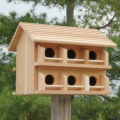 25 best ideas about purple martin on pinterest may for Martin house designs