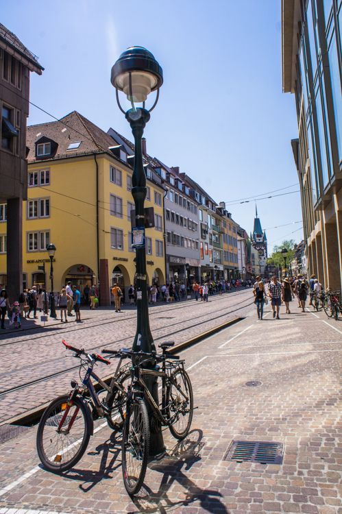 Epic What to do in Freiburg for a Day