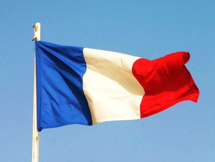 vertical french flag