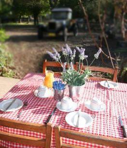 A farm fresh breakfast
