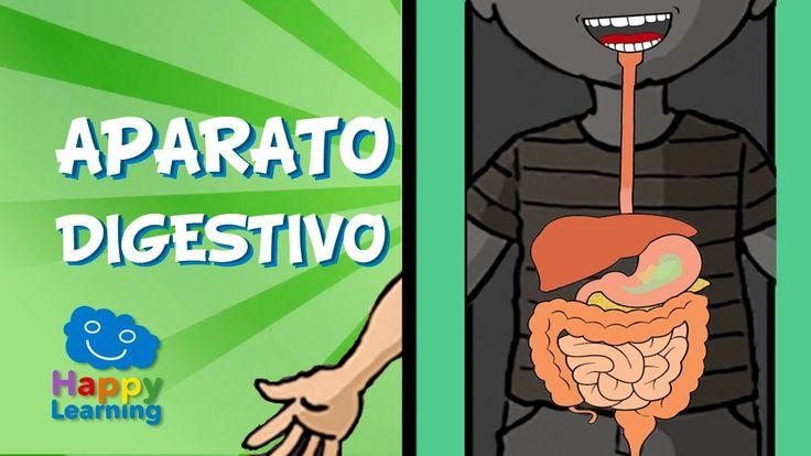 El Aparato Digestivo y la Digestión | Videos para Niños.