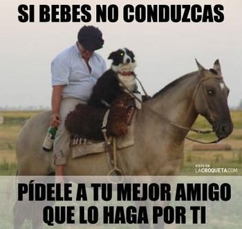 memes de borrachos - Google Search