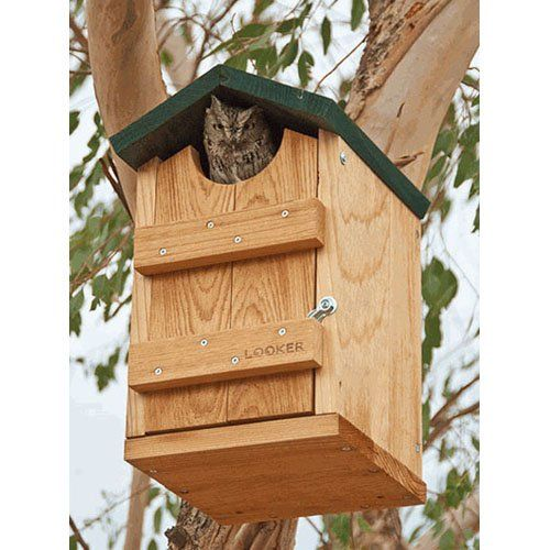 Have to have it. Songbird Essentials Screech Owl House $64.99