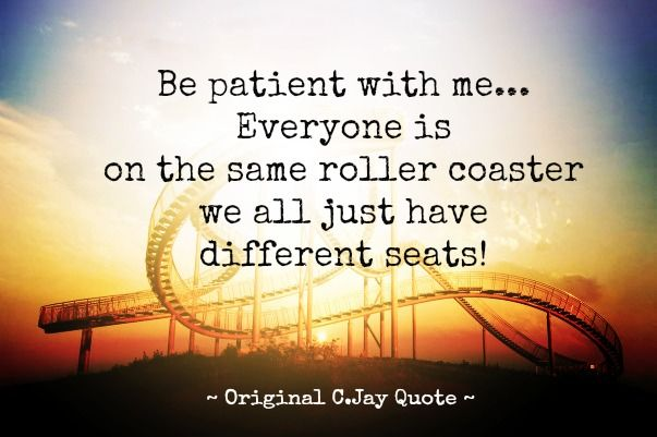 1000+ Roller Coaster Quotes On Pinterest
