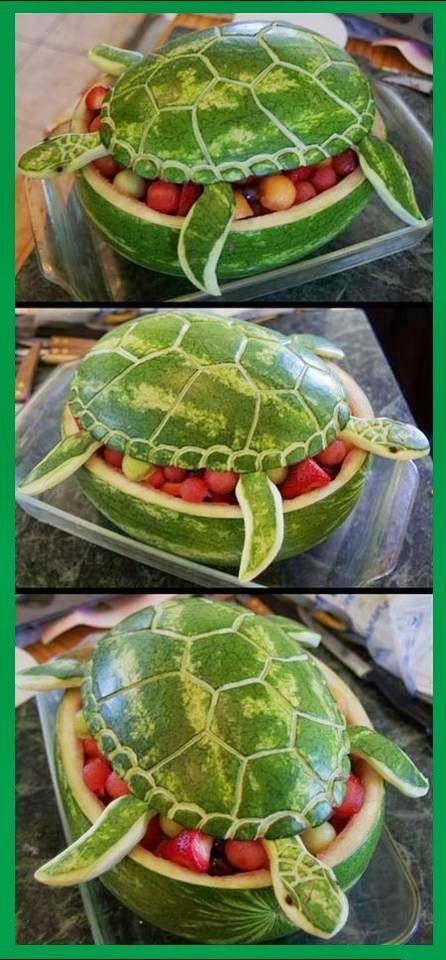 Un melon-tortue. Que se cache-t-il sous sa carapace?