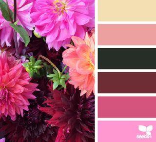 Petalled palette   design seeds   Bloglovin'
