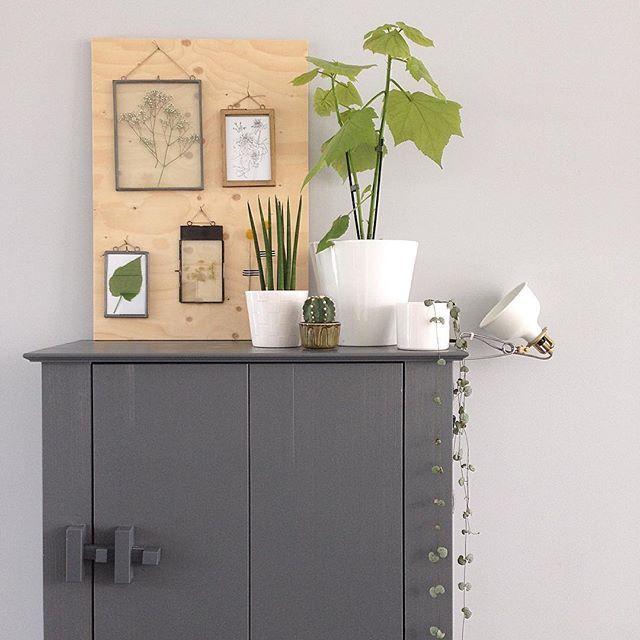 Plaat met fotolijstjes en droogbloemen