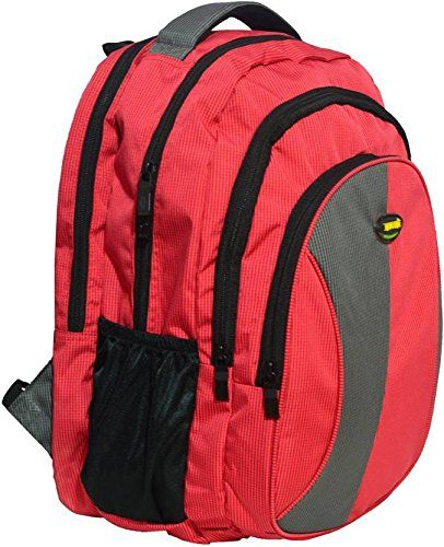 New Era Polyester 40 Ltrs Waterproof Red School Backpack Bags For Boys S Skybags American Touris