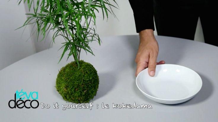 153 melhores imagens de jardin de mousse no pinterest jardins suspensos jardim suspenso e. Black Bedroom Furniture Sets. Home Design Ideas