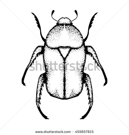 Vector image of #beetle. Hand drawn by ink, black and white color. #pointillism