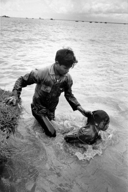 A Vietnamese soldier drags a woman by her hair through a canal in Ap La Ghi, Mekong Delta, August 26, 1965 during the Vietnam War. The woman, suspected of being a Viet Cong collaborator, had her hands tied and was submerged repeatedly as soldiers interrogated her for information about the identity and location of local guerrilla forces. She was later imprisoned. (Photo by Huynh Thanh My/AP Photo)