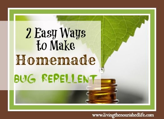 homemade bug repellent recipes