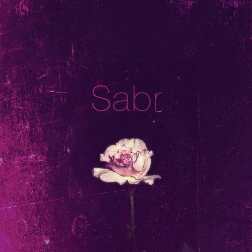 Sabr means Patience in Arabic and many other languages spoken by Muslims.