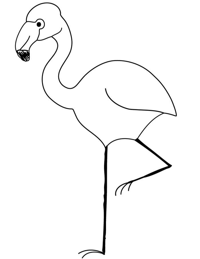 Kindergarten Coloring Pages Of Flamingo Animal Coloring Pages Flamingo Coloring Page Unicorn Coloring Pages