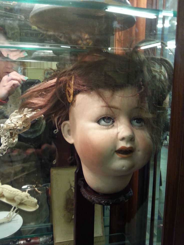 creepy dolls, curio, assemblages