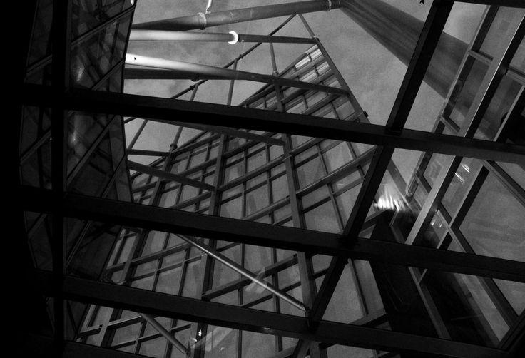 Q1 Sky scraper gold Coast Australia , Q1 , building , silhouette ,