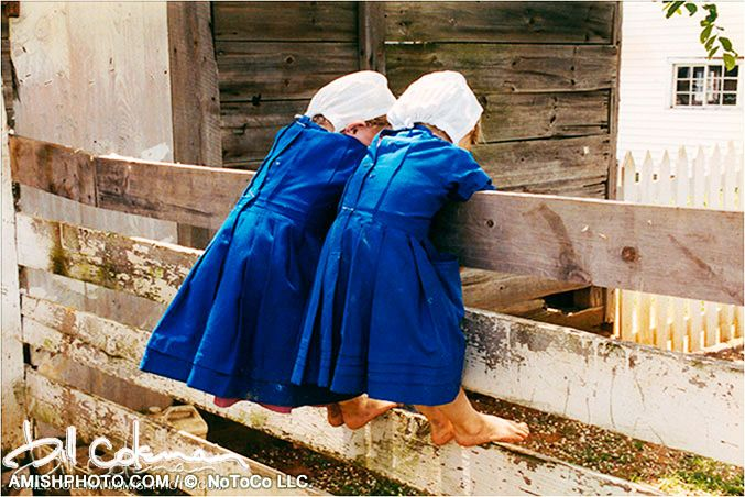 "Amishphoto.com - the online gallery of photography by Bill Coleman. ""Two in Blue"""