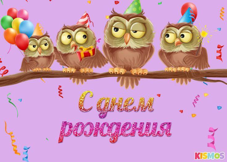 Прикольные, открытка на день рождения сова