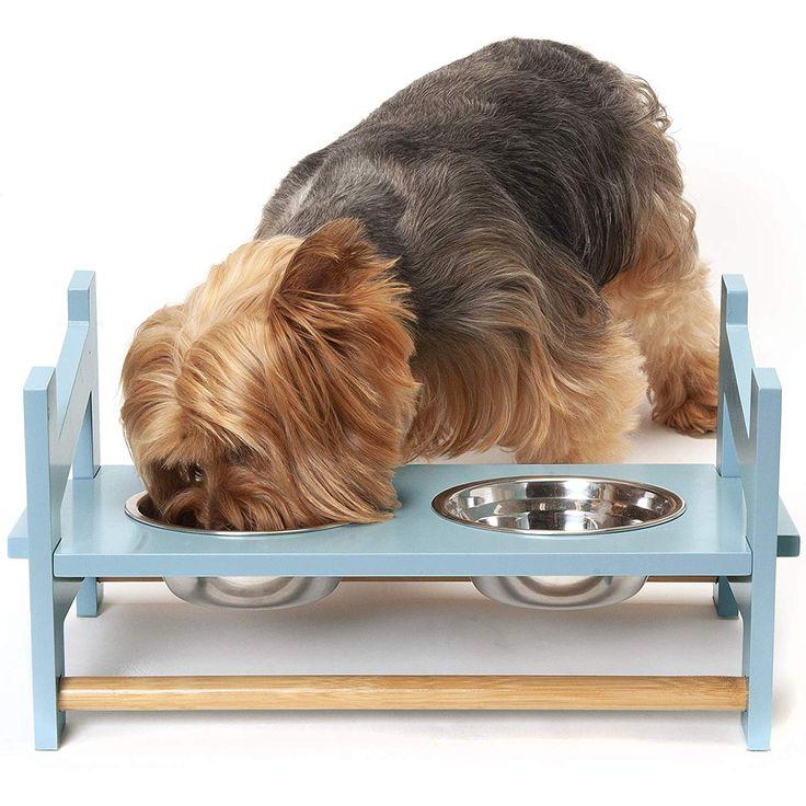 Puppy Feeding Bowls For Litters Australia 2021