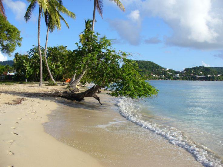 Martinique Reiseführer http://www.abenteurer.net/3831-martinique-reisefuehrer/