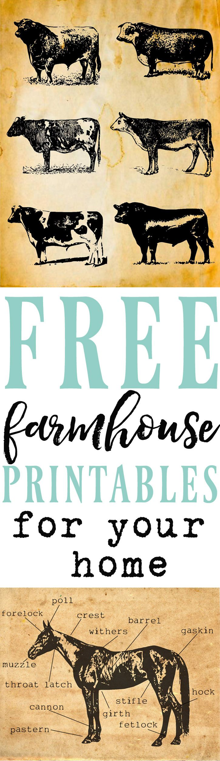 Looking to add farmhouse style to your home?! Tons of farmhouse inspired printables to choose from all for free!! Joanna Gains/fixer upper inspired home decor perfect to adorn your shiplap walls!