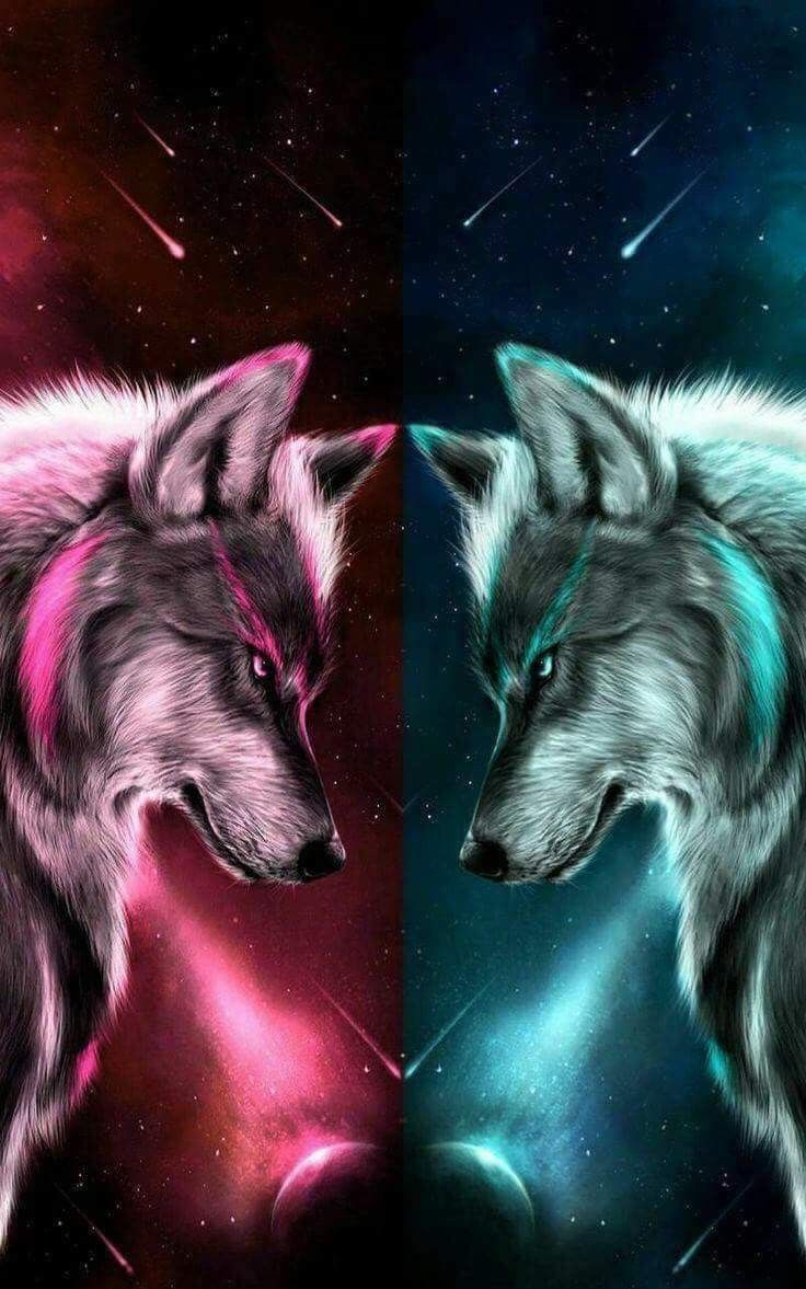 Pin By Tammy Hosey On Wolves And Indians In 2020 Wolf Wallpaper