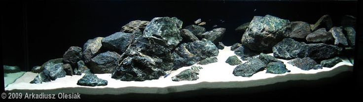 Demasoni-Kingdom-nice-rockwork-and-sand-So Cichlid lovers...This is supposedly what your tank should look like. No slate & visually simulating while creating a good environment for cichlids to hide. This is a very critical & harsh article on setting up your cichlid tank but his interests are in the fish & their happiness. Not ours. Keep in mind that while you think your fish are happy, they're probably not. It's a good read!!!