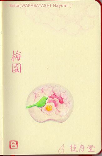 2014_02_19_baien_01_s 松江の桂月堂さんの和菓子 「梅園」 梅園=baien 梅=bai=ume=Japanese apricot blossom 園=en=garden  for this drawing I used: Faber castell polychromos Holbein artists colored pencil  © Belta(WAKABAYASHI Mayumi )