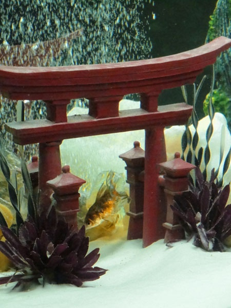 21 best fish tank decor images on pinterest fish for Asian fish tank decorations