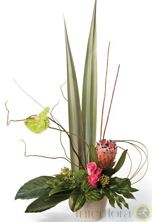 Flamingo http://www.interflora.co.nz/flowers/product/index.cfm/new-zealand/potted-arrangements/flamingo