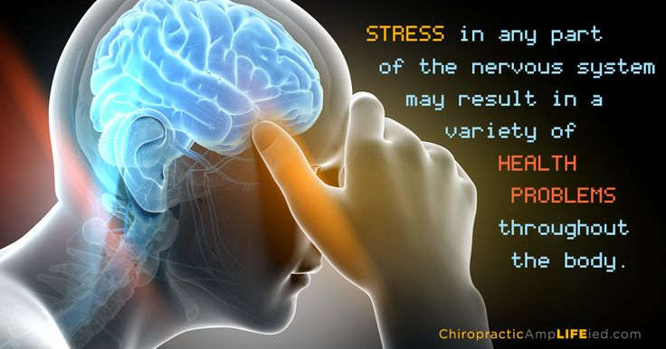 Because the nervous system is the master controller of all muscles and organs in the body, reducing stress on the nervous system through chiropractic adjustments will frequently lead to improved health in the entire body. #health #chiropractor #wellness #fitness #spine #nutrition #physicaltherapy #posture #yoga #adjustment #healthy #physiotherapy #manualtherapy #motivation #massage #scoliosis #crossfit #healing #spinalhealth #healthcare #inspiration #quotes  #eatclean #healthyliving…