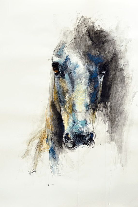 """16""""x20"""" - Photo print of a Horse Head Drawing"""